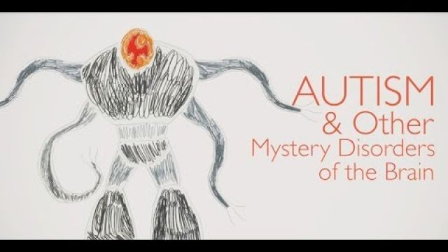 Autism and Other Mystery Disorders of the Brain