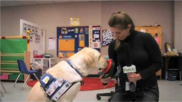 Service Dog Helps Autistic Students Find Their Voice